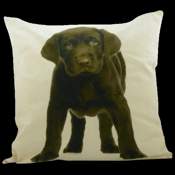 Kissen mit Labrador Welpe, Braun / Chocolate