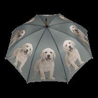 Regenschirm Gelber Labrador