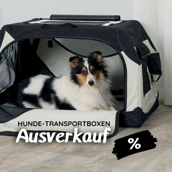 Hundetransportboxen