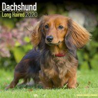 Kalender 2020 Langhaar Dackel - Dachshund Longhaired