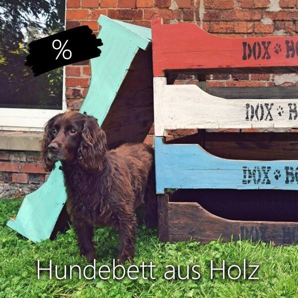 ROMNEYS Doxbox Hundebett - Aktion