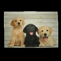 Küchenmatte Labrador Retriever Welpen