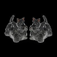 Salz und Pfefferstreuer mit Hundemotiv Scotch Terrier