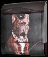 Briefkasten mit Hundemotiv - Französische Bulldogge