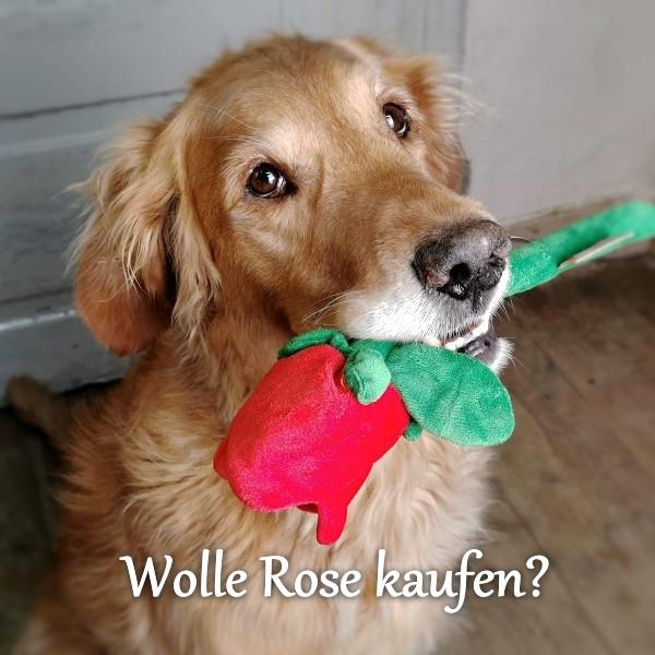 Rote Rose Plüschspielzeug