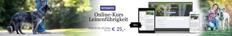 """Kosmos Online-Kurs """"Leinenführigkeit"""""""