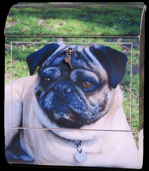 Briefkasten mit Hundemotiv - Mops