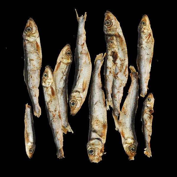 Trockenfisch Sprotten, 200g