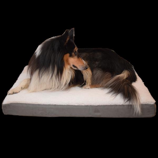 Hundematratze Orthobed