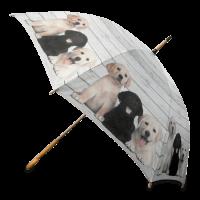 Regenschirm Labrador Welpen