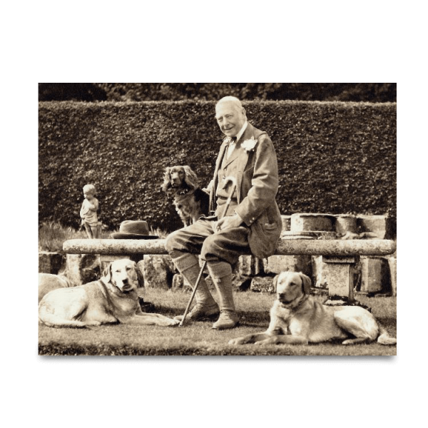 Reprint - Retriever gelb, ca 1924, The Earl of Lonsdale - Kennel Lowther
