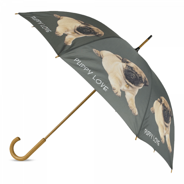 Regenschirm Mops Welpe