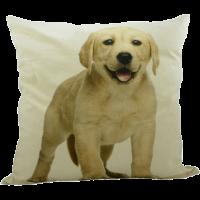 Kissen mit Labrador, Gelb