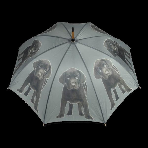 Regenschirm Chocolate Labrador
