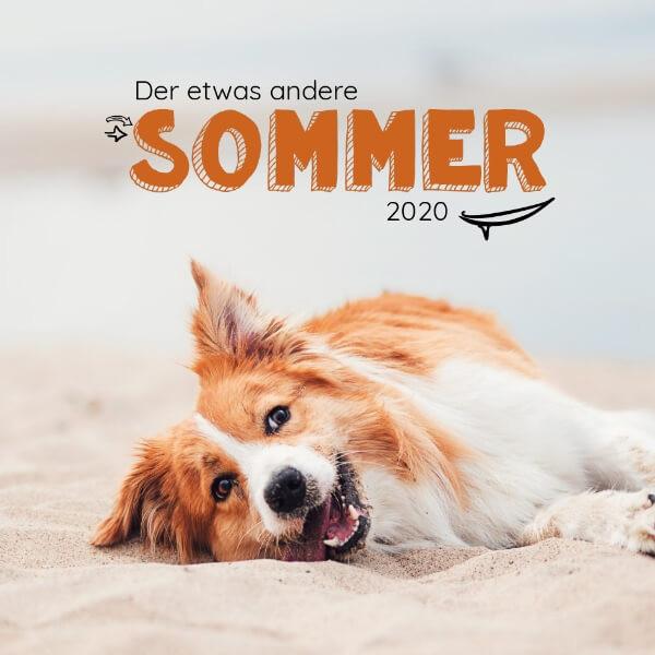 Sommerprodukte bei ROMNEYS