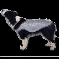 ClimaCOOL - Kühlweste für Hunde