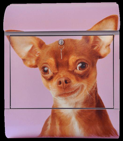 Briefkasten mit Hundemotiv - Chihuahua